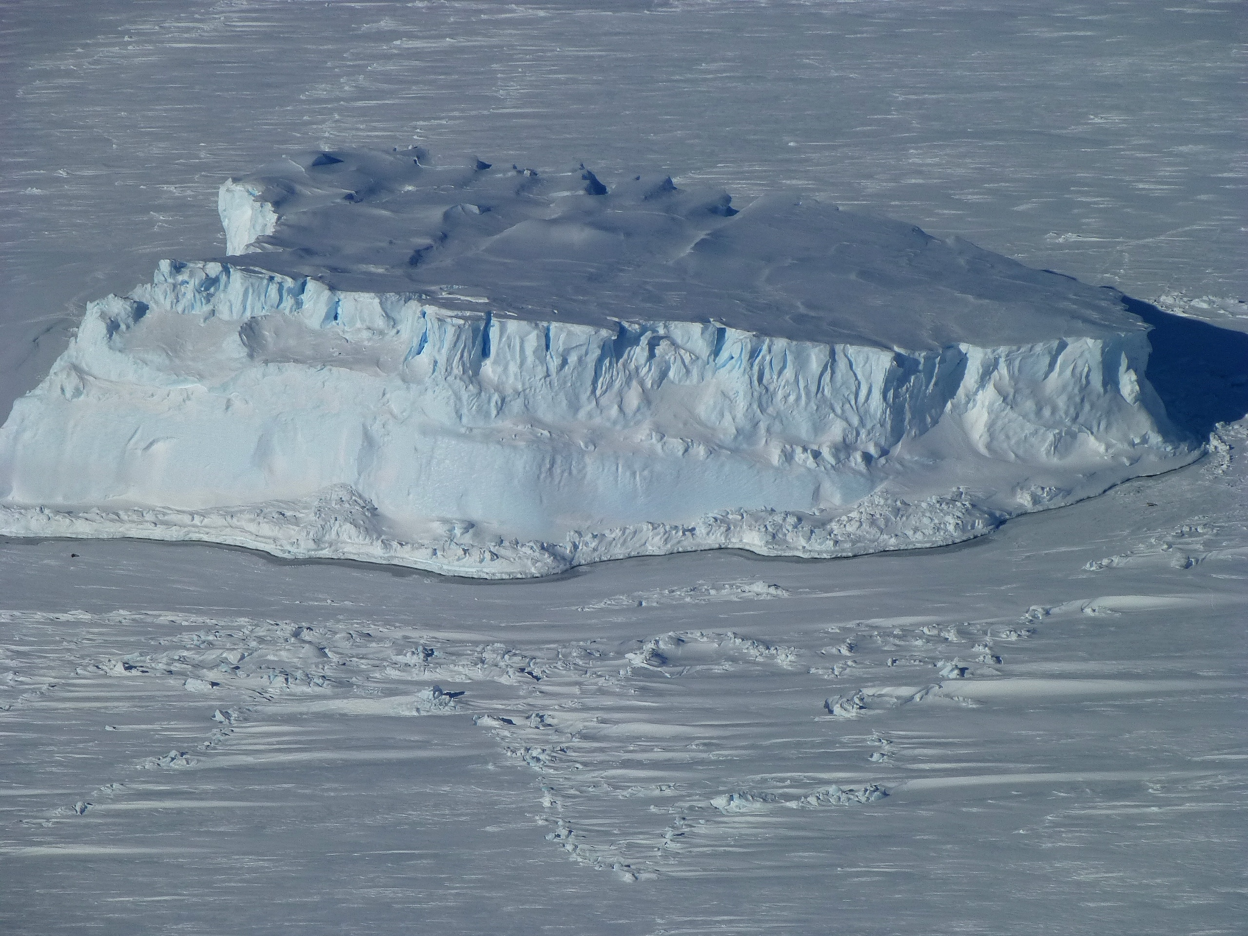 An iceberg trapped in sea ice in the Amundsen Sea, seen from the IceBridge DC-8 during the Getz 07 mission on Oct. 27. Credit: NASA / Maria-Jose Vinas
