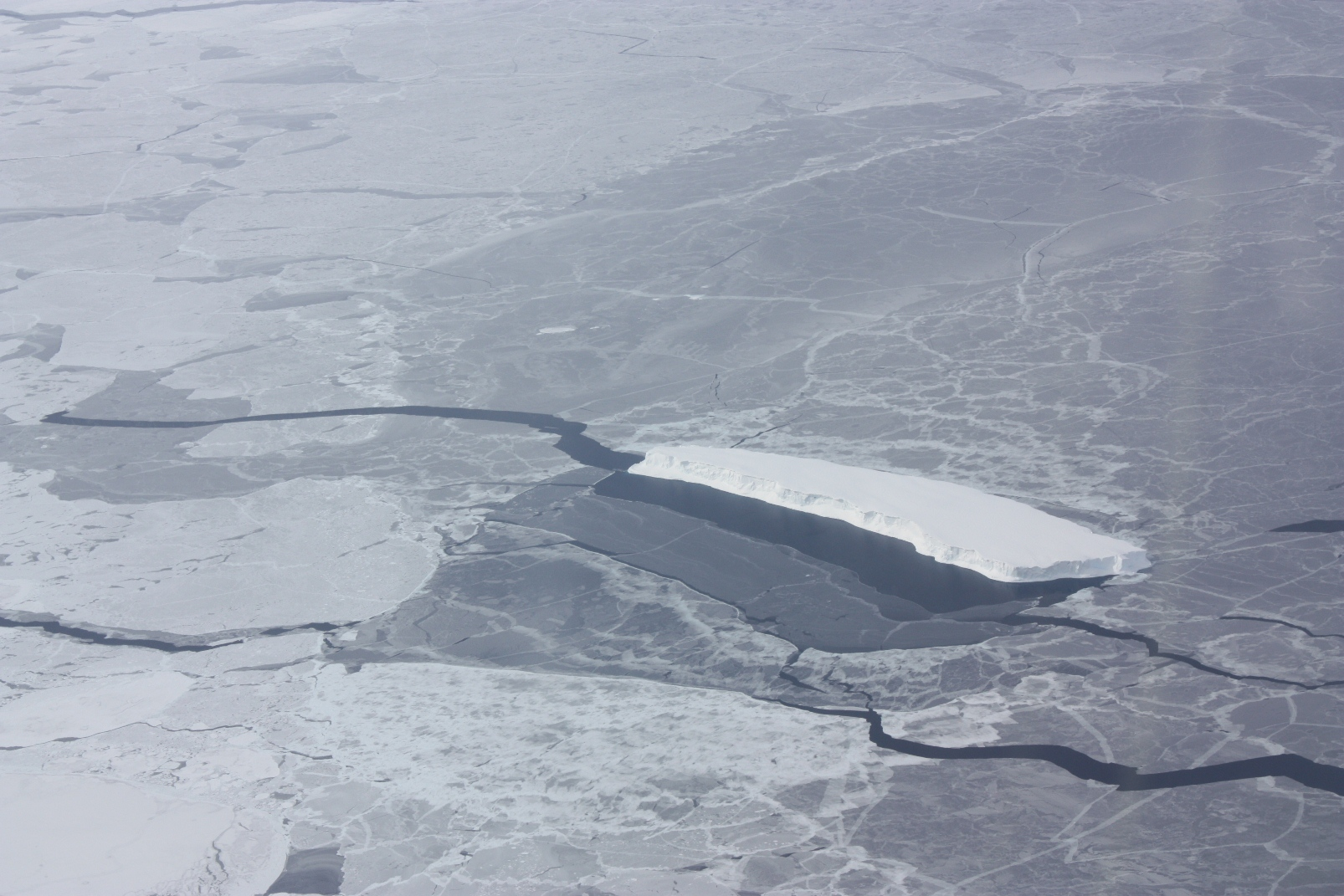An iceberg embedded in sea ice in the Bellingshausen Sea, seen from the IceBridge DC-8 on Oct. 19. Credit: NASA / George Hale