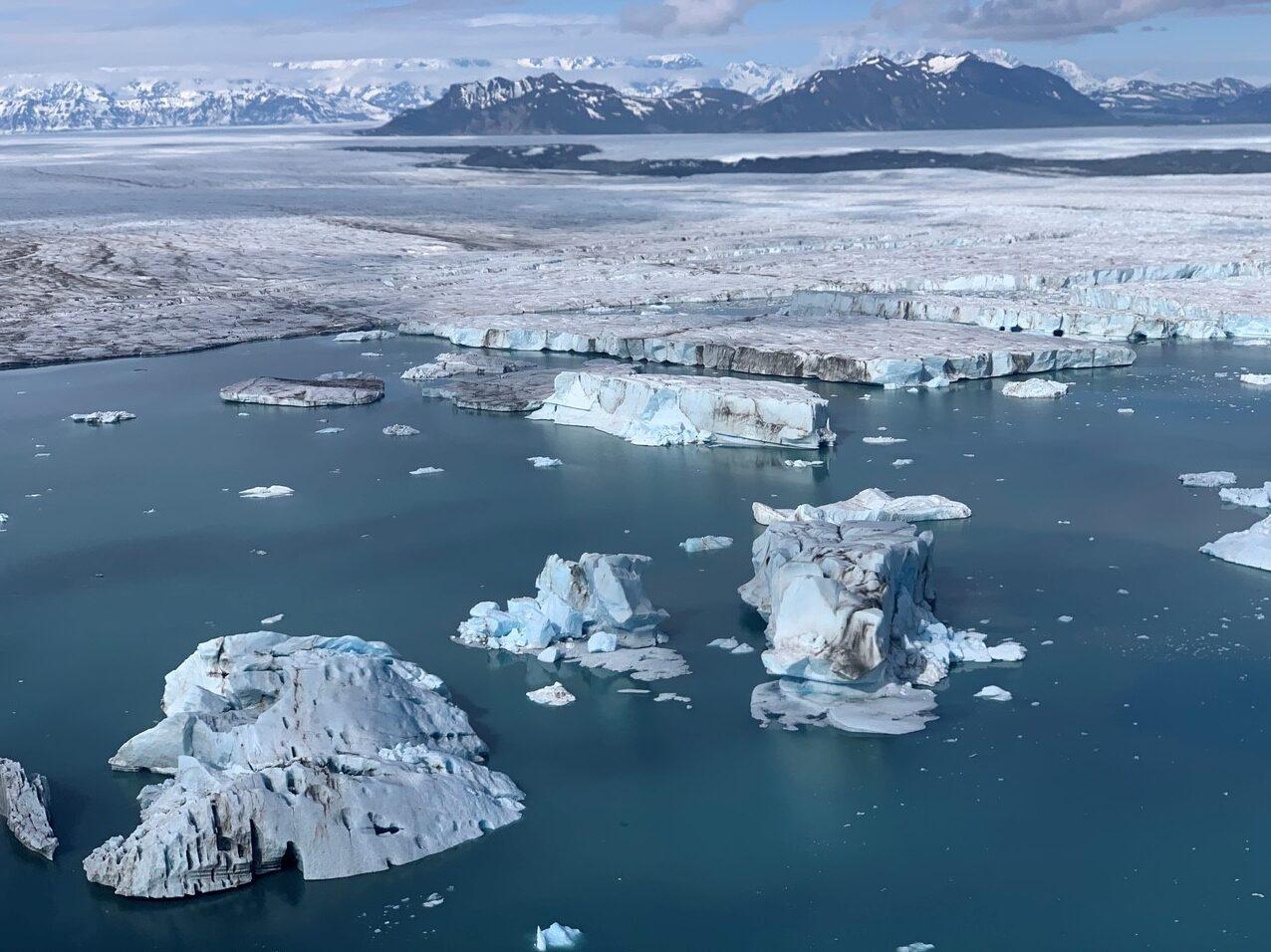 Image of Bering Glacier Terminus, Alaska